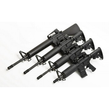 PAP OBERLAND ARMS OA-15, 20