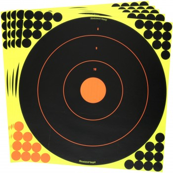 Tarče Birchwood casey -SHOOT N C, 30 kom
